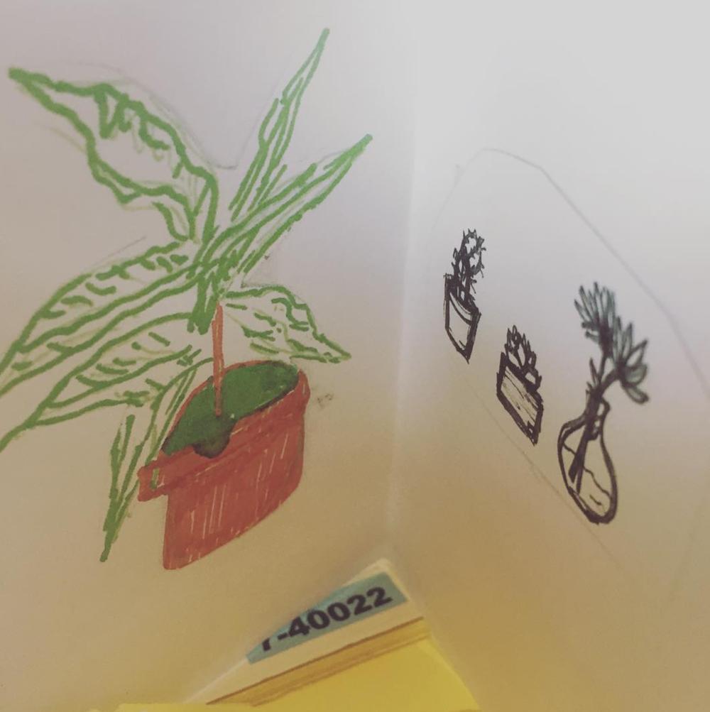 Plants-zine.png