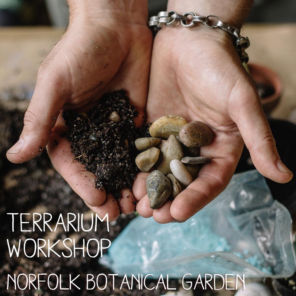 Terrarium Workshop @ Norfolk Botanical Garden — Glass Gardens