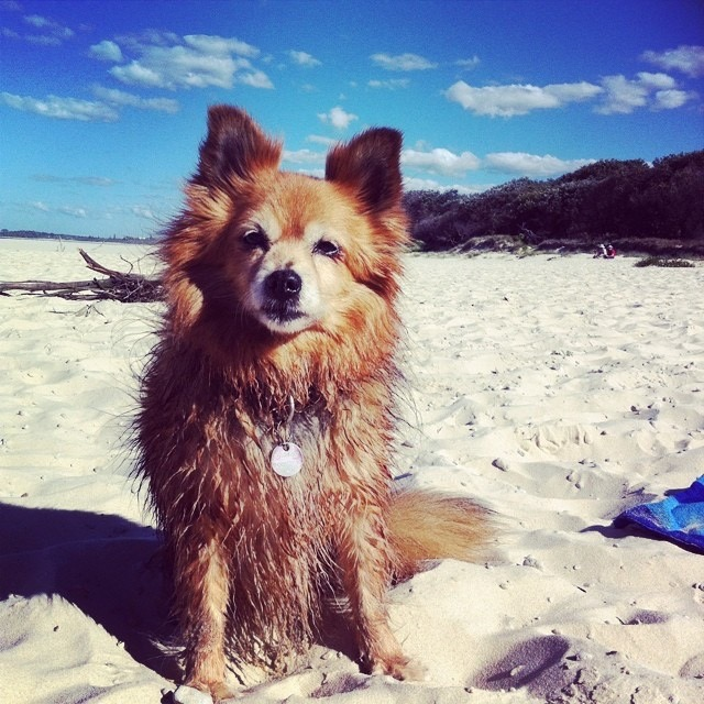 Our beach girl