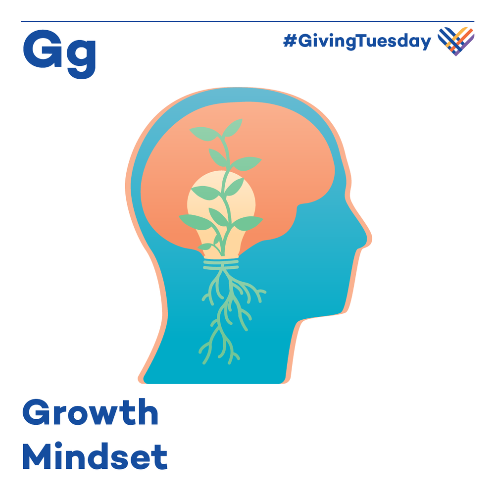 Students with growth mindsets—the belief that they can learn more or become smarter if they work hard and persevere—may learn more quickly, and view challenges and failures as opportunities to improve their learning.