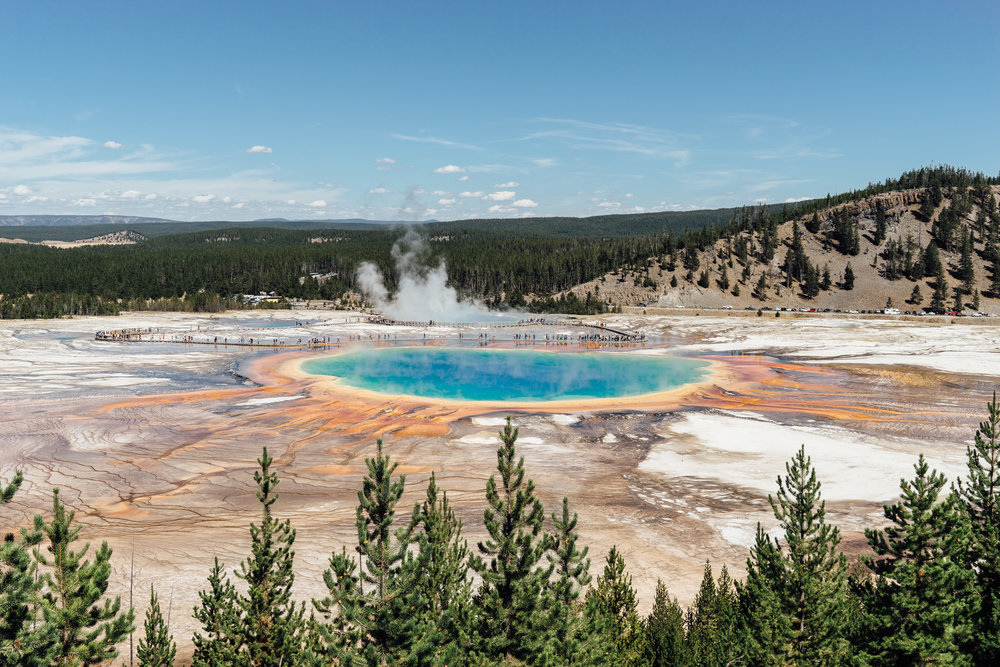 The  Grand Prismatic Spring  is the largest hot spring in the United States. The spring got its name from the rainbow-like coloration. This photo is taken from an overlook which is an easy 15 minute hike from the parking lot.