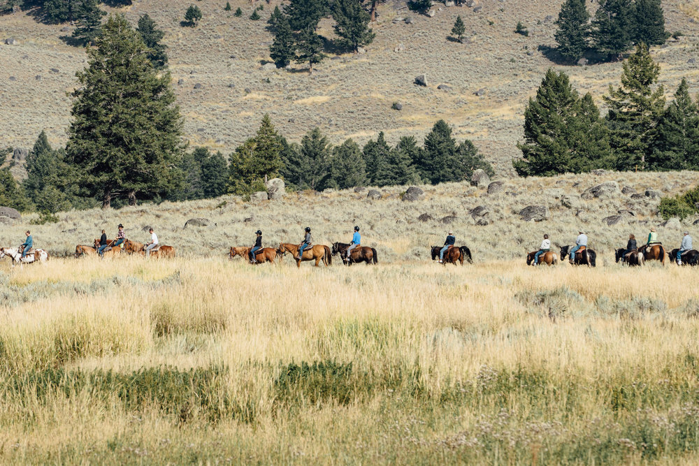 A group of horseback riders ride through the valley.