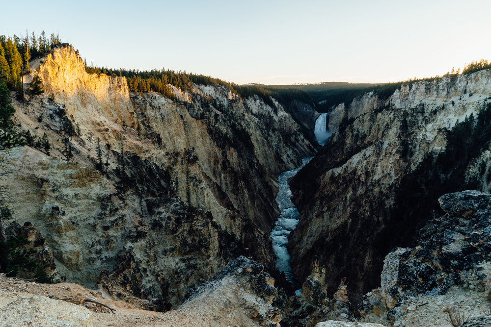 Yellowstone River cuts through the  Grand Canyon of the Yellowstone .