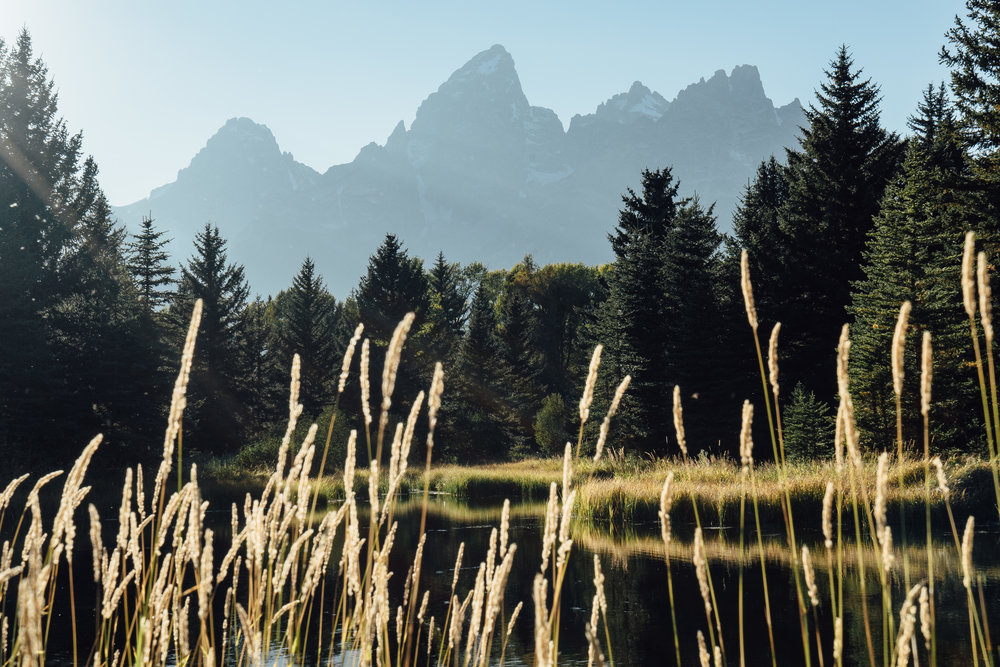The Grand Teton is always majestic whichever way you look at it.