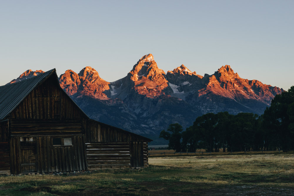 The sun casting its golden morning light on the Teton range from the famous  Moulton Barn .