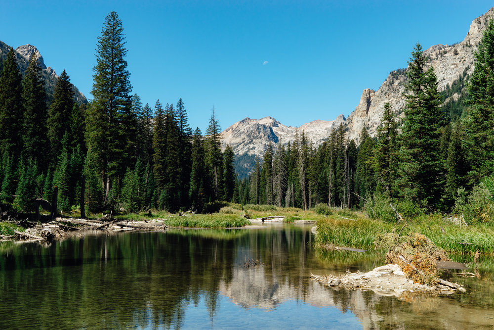 A peaceful scenary along the Cascade Trail. The moon is clearly visible just above the Teton Range.