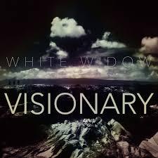 Visionary - Hi.jpg