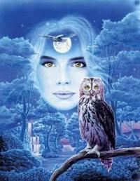 owl_goddess.jpg
