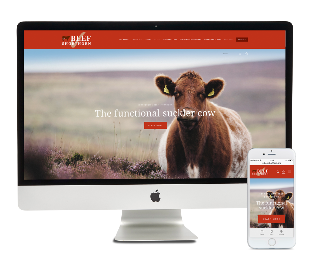 beefshorthorn-website.png