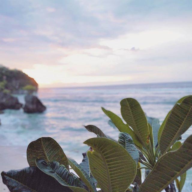 Sea, Salt & Sunsets 🌸🌊 . . . . . . . . #bingin #binginbeach #bali #sunset #travel #nature