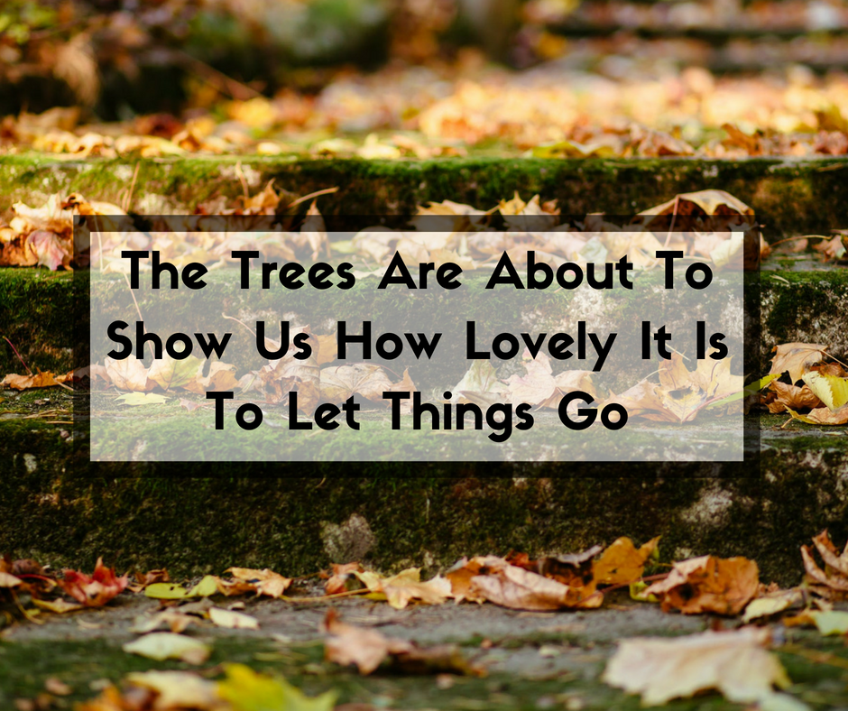 The Trees Are About To Show Us How Lovely It Is To Let Things Go.png