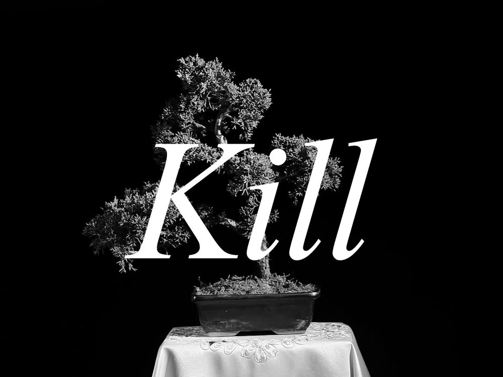 Kill (the) TV-Set