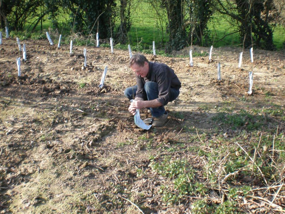 21namiddagjefleeuwerckbeveilgtplanten.jpg