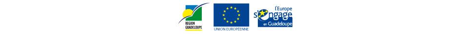 logos-regioneurope.jpg
