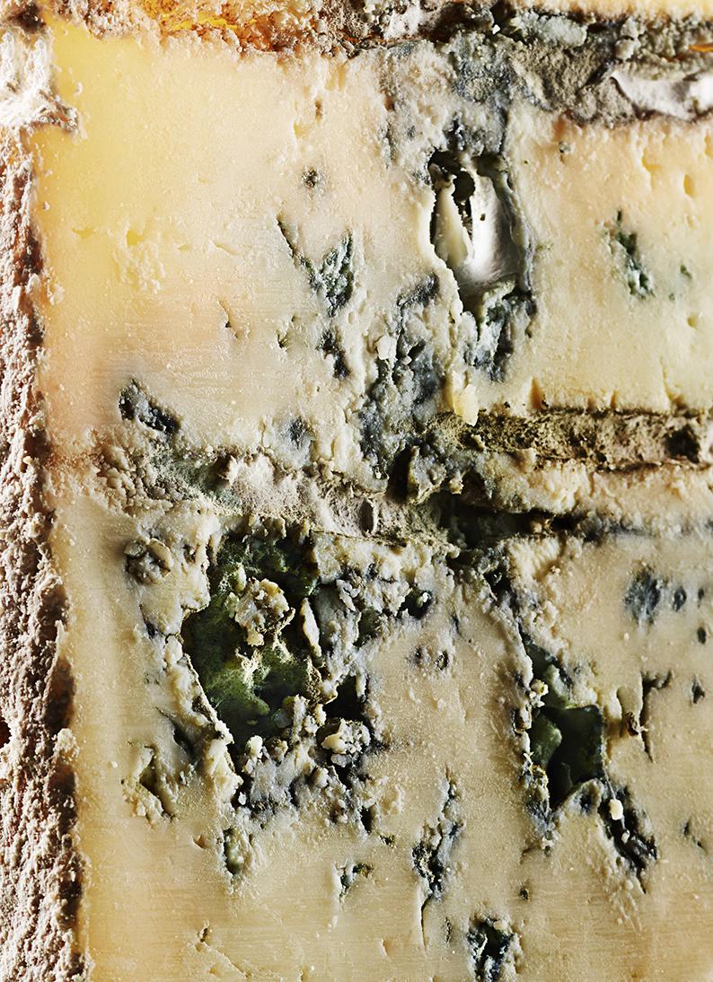 Cheese_020615_205.jpg