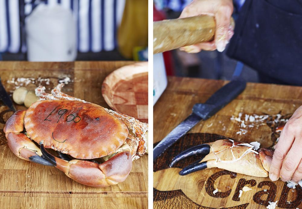 9_crab.jpg