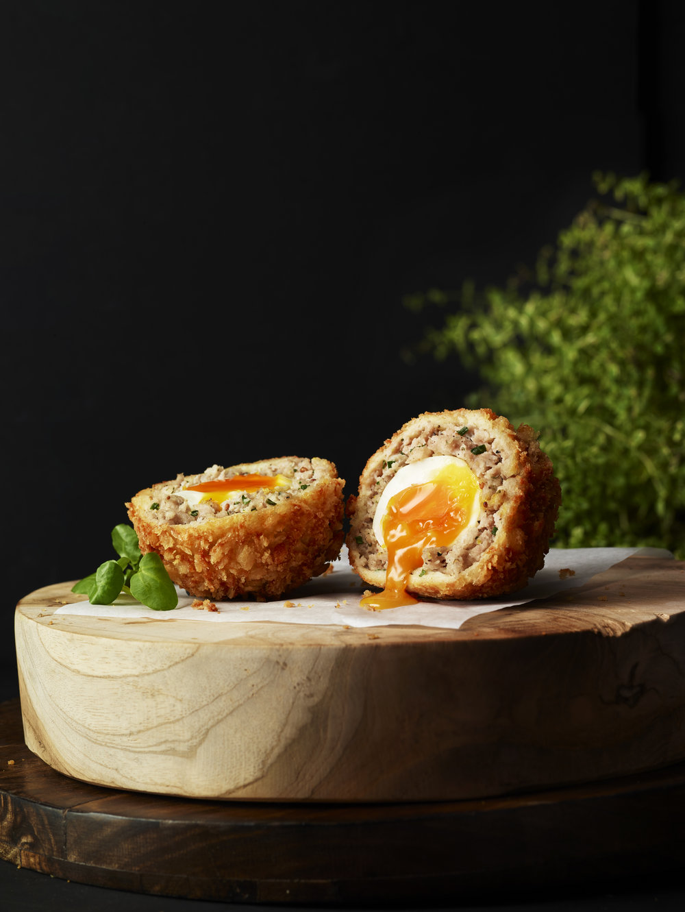 Scotch egg_single  copy.jpg