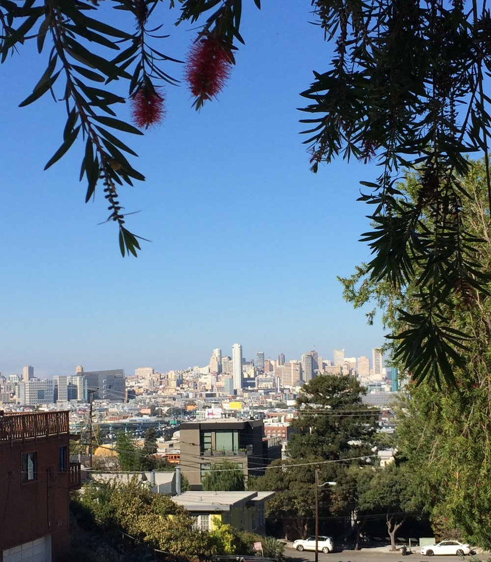 Our view from the street of our Airbnb in Potrero Hill