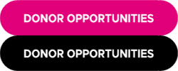 DONOR_OPPORTUNITIES_EN_DOBLE.png