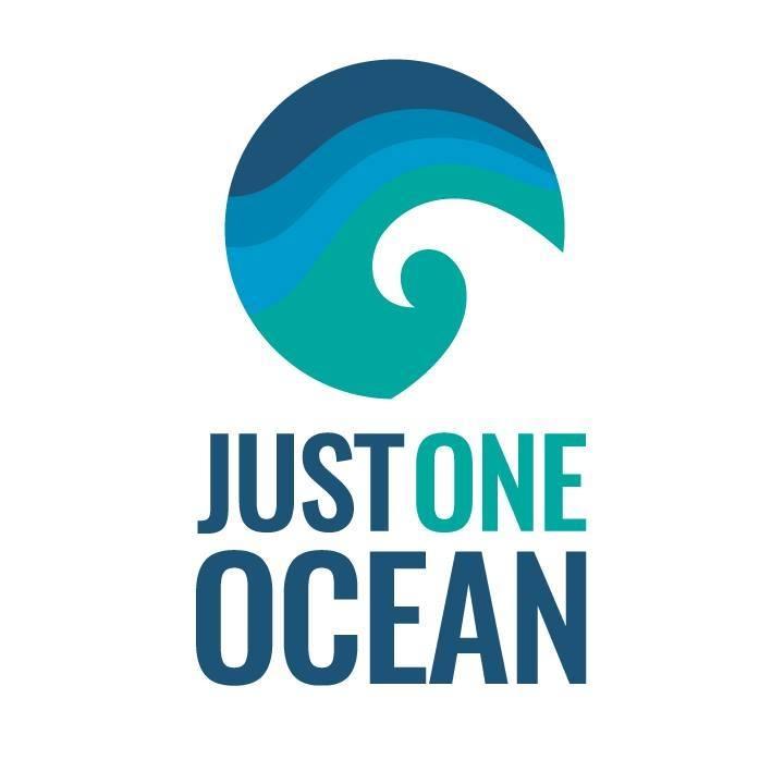 Just One Ocean.jpg