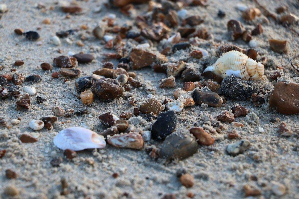 Tidy Up The Beach -