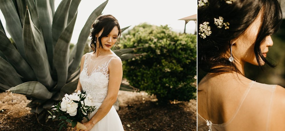 Wilderlove Co_Austin Texas_Vintage Villas Hotel_Wedding Photography_0023.jpg