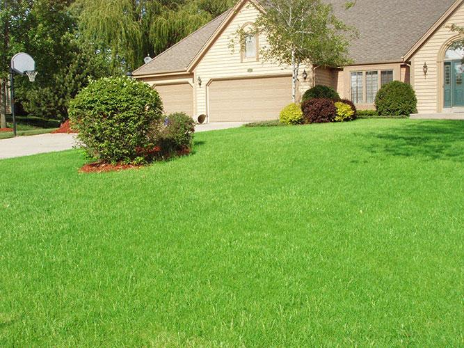 elmbrook-lawn-3.jpg