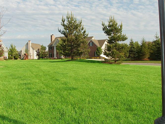 elmbrook-lawn-8.jpg