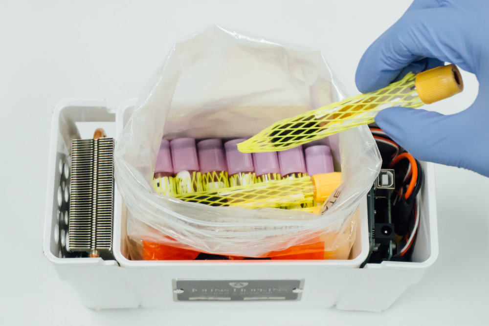 Temperature-controlled specimen transport container designed by Hopkins researchers is packed with blood sample test tubes. Credit: Johns Hopkins Medicine.