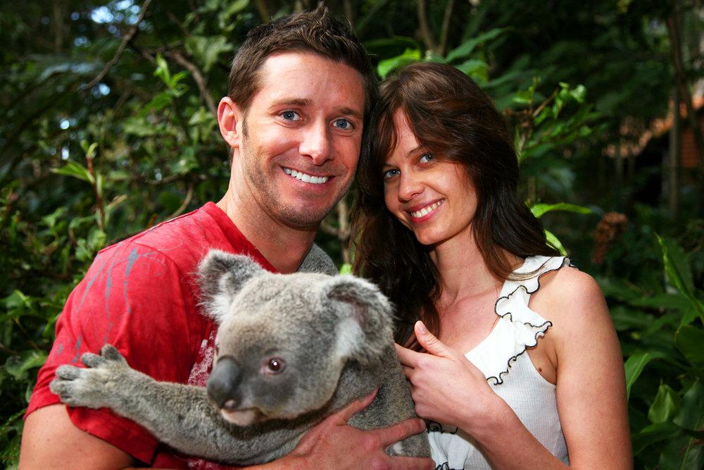 Koala Nashlor Travel.jpg