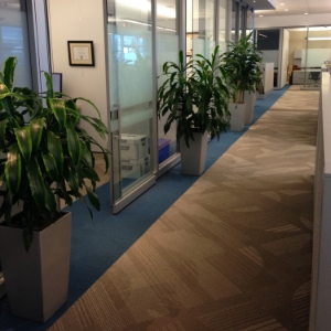 sandvik canada mississauga  office