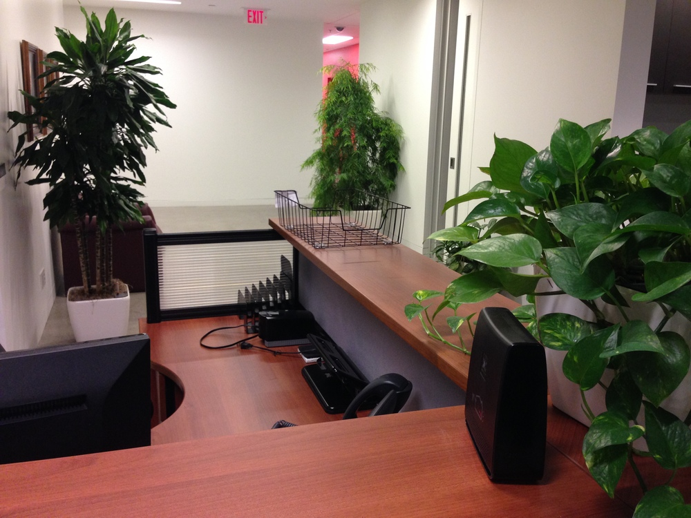 MMM Executive Desk Area.jpg