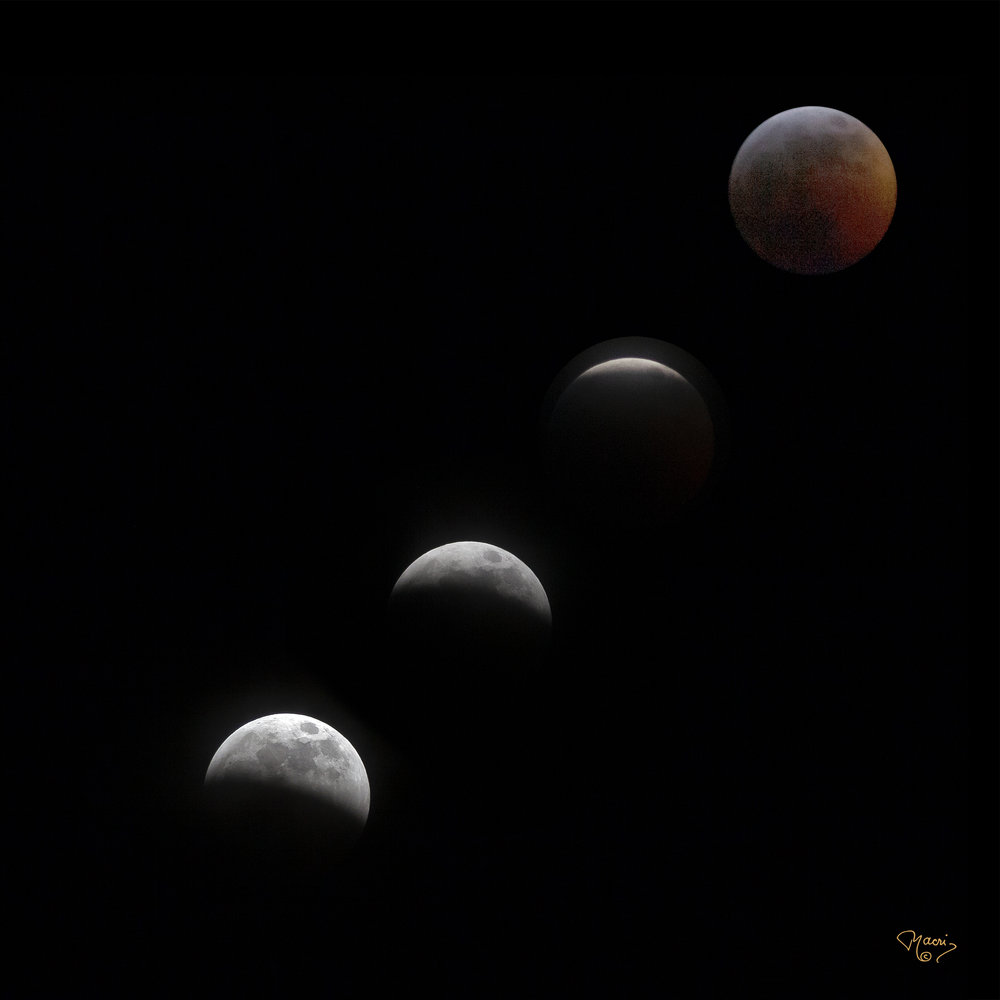 Lunar Eclipse-10x10.jpg