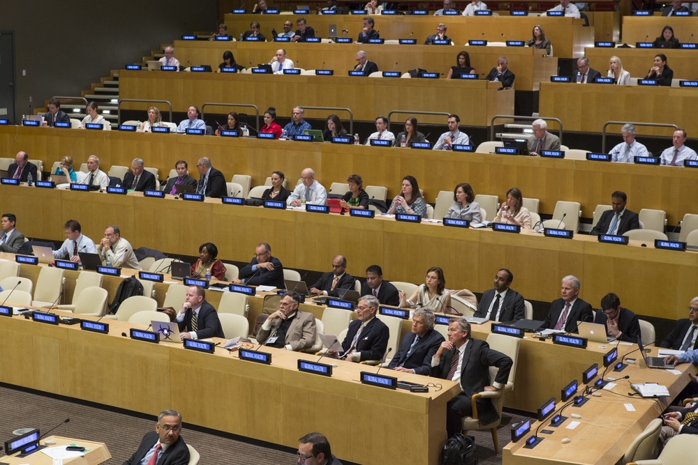Innovation Partner presentations at the 2014 United Nations Forum