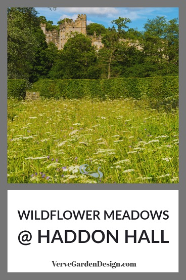 Wildflower Meadow With Yarrow (Achillea millefolium) and Meadow Cranesbill (Geranium pratense) below Haddon Hall in Derbyshire.  Image: Chris Denning/Verve Garden Design.