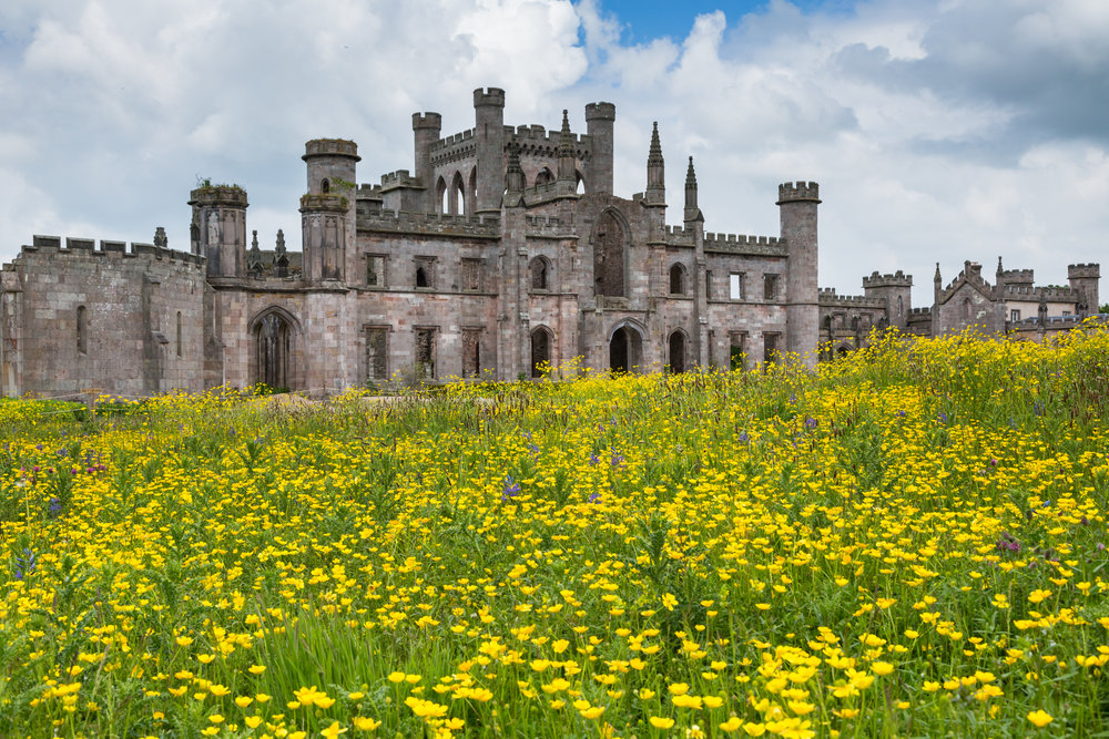 Vast Areas of Meadow-Style Planting by Designer Dan Pearson at Lowther Castle. Image: Chris Denning/Verve Garden Design.