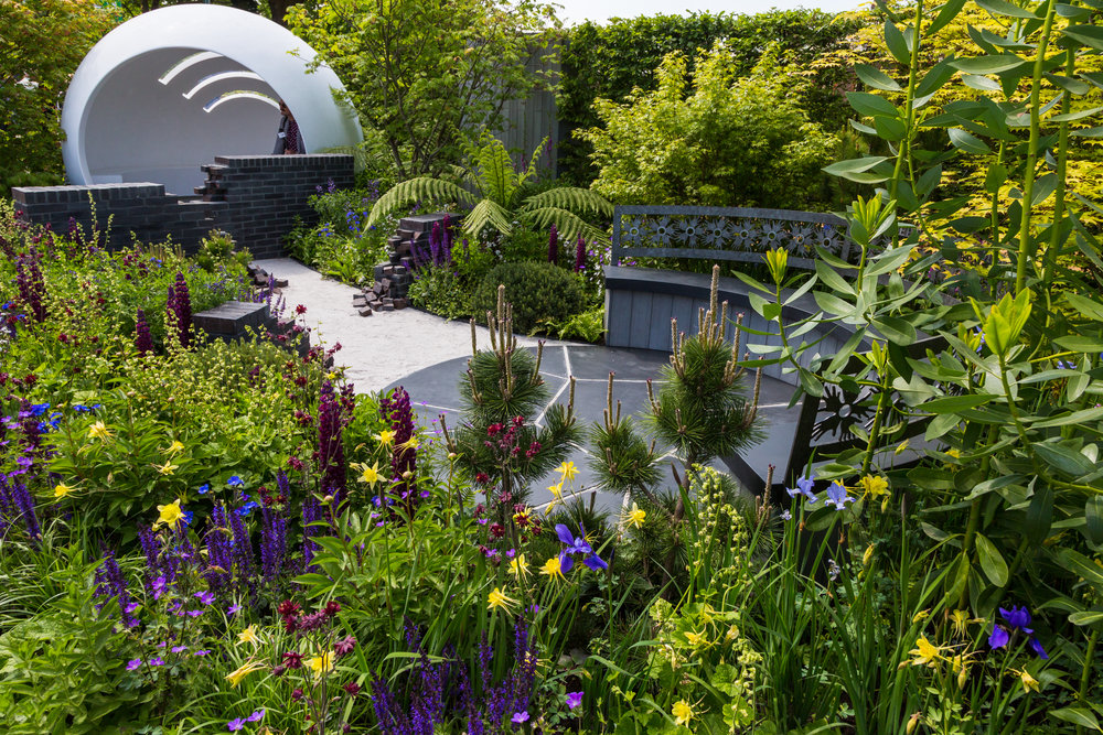 Strong contrast between deep-coloured flowers and lighter green leaves repeated beautifully. Designer: Naomi Ferrett-Cohen. Image  Chris Denning/Verve Garden Design.