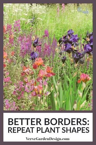 Repeated upright plant shapes of Iris, Salvia, Verbascum and grasses. Designers:  Andrew Wilson & Gavin McWilliam.  Image: Chris Denning/ Verve Garden Design
