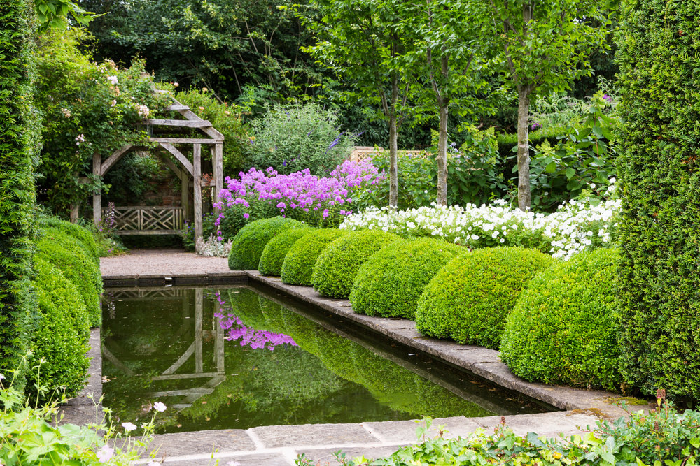 Phloc, Buxus and Petunias by the Reflecting Pool at Wollerton Old Hall. Image: Chris Denning/Verve Garden Design.