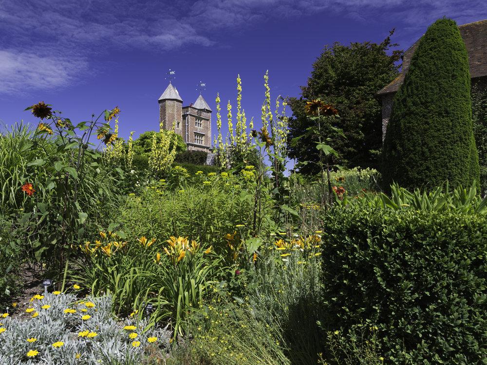Gold dominating the NT Sissinghurst Castle South Cottage Garden in August.   Image:  Chris Denning/Verve Garden Design.