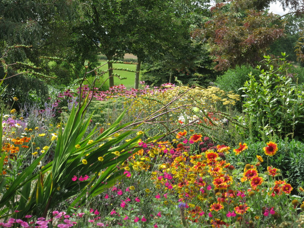 Salvia, Helenium, Echinacea, Achillea, Sedum and Coreopsis at Brightwater Garden. Image: Lorraine Young /Verve Garden Design.