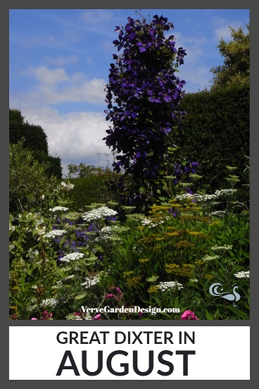 Towering Clematis and Achillea Plant Combination at Great Dixter. Image: Lorraine Young/Verve Garden Design