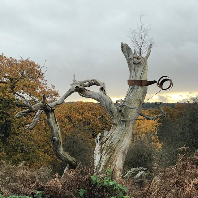Interesting sculpture in the @NTCalkeAbbey estate stopped me in my tracks. Anyone know who the sculptor is?