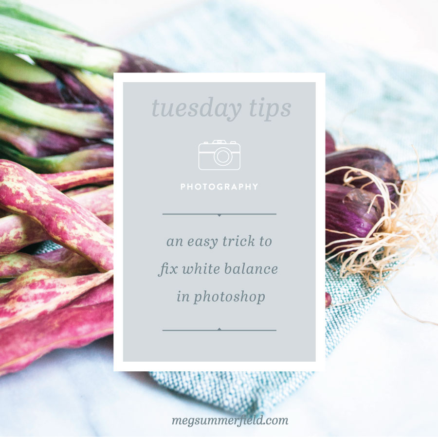 Tuesday+Tips+|+Photography+|+White+Balance.jpeg