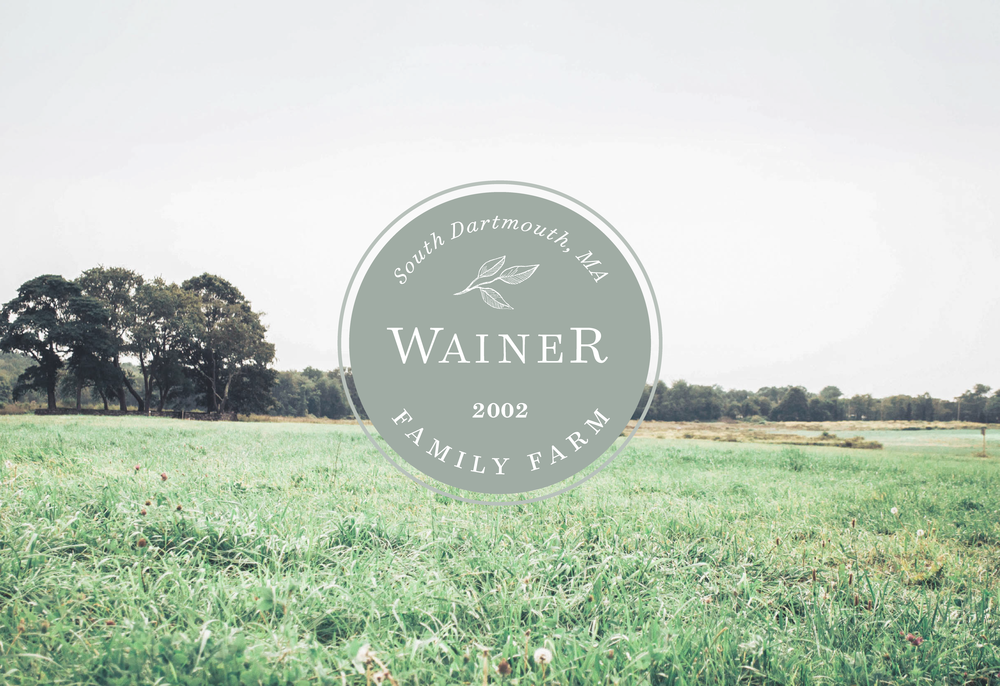 Meg Sumemrfield Studio | Wainer Family Farm Branding | South Dartmouth Massachusetts