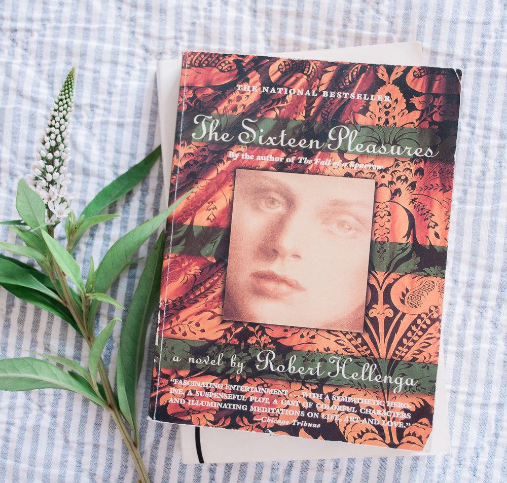 The Sixteen Pleasures - robert Hellegna