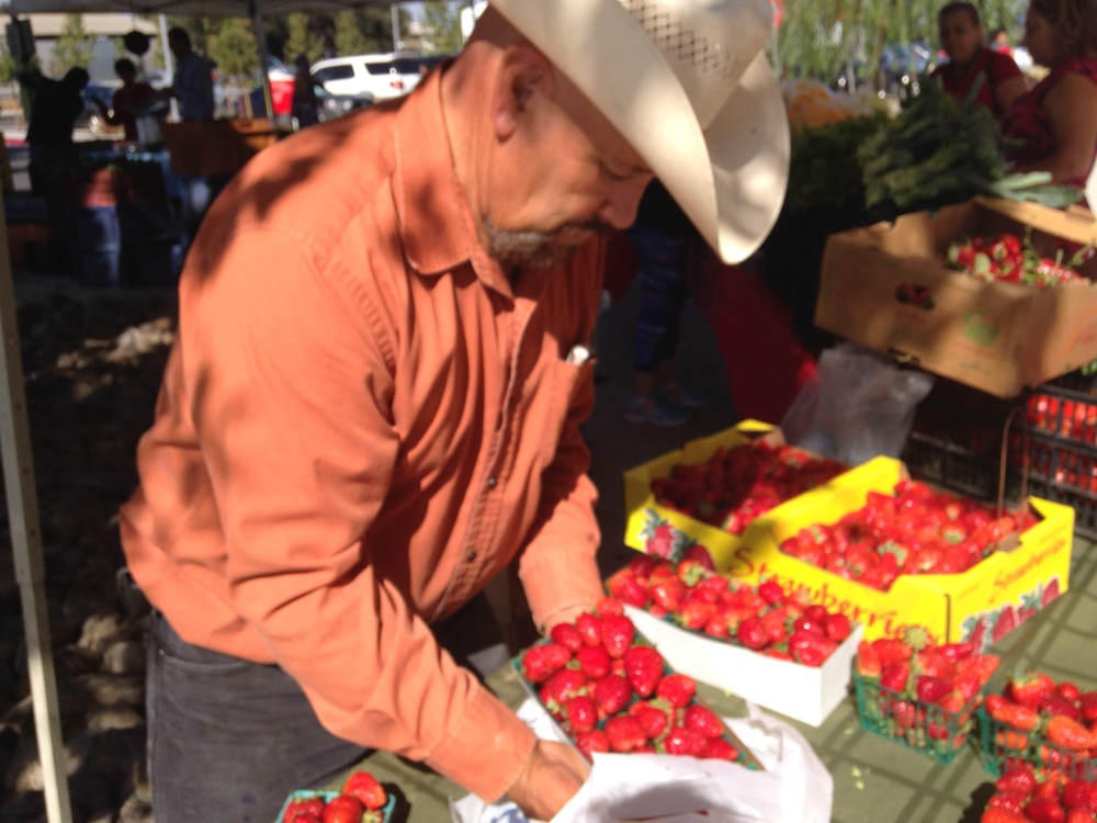 "Ruben grows a wide variety of vegetables used in Hispanic cooking including hot peppers, Roma tomatoes, winter and summer squashes, cilantro, beans, tomatillos, napales, and chayote. Ruben has over 20 years of farming experience, and he loves being out in the fields. ""Yo soy del rancho,"" he says."