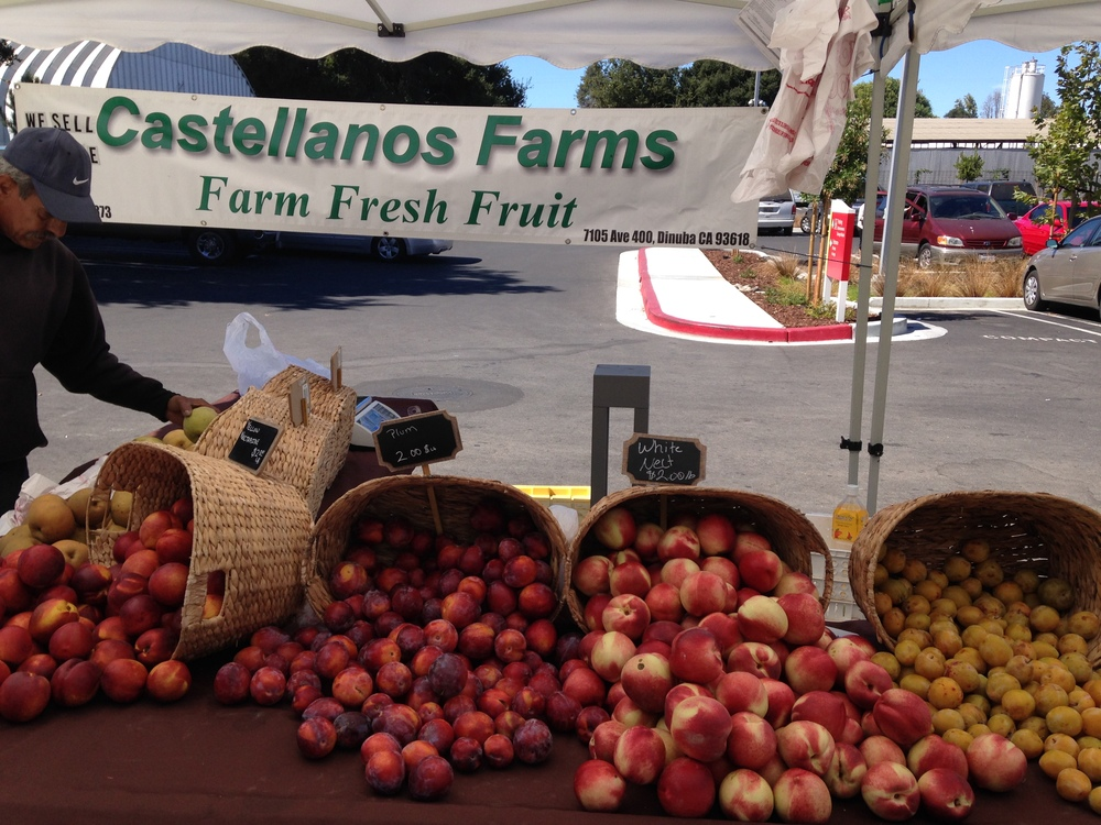 In California, farmers have been among those most heavily hit by the drought this year. At Castellanos farms, they have been very conscious of their water usage by utilizing drip irrigation and planting cover crops. In this way, they have still been able to bring to the farmers' market the best stone fruits, grapes, apples, pears, pomegranate, and more.