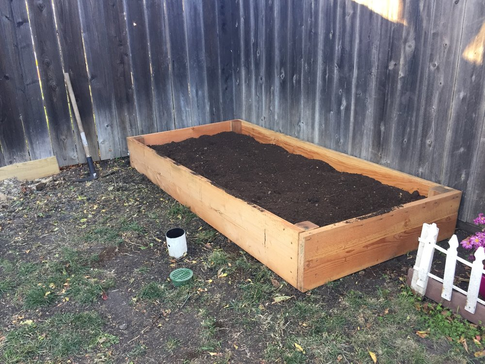 Copy of Planter box for Rosa.jpg