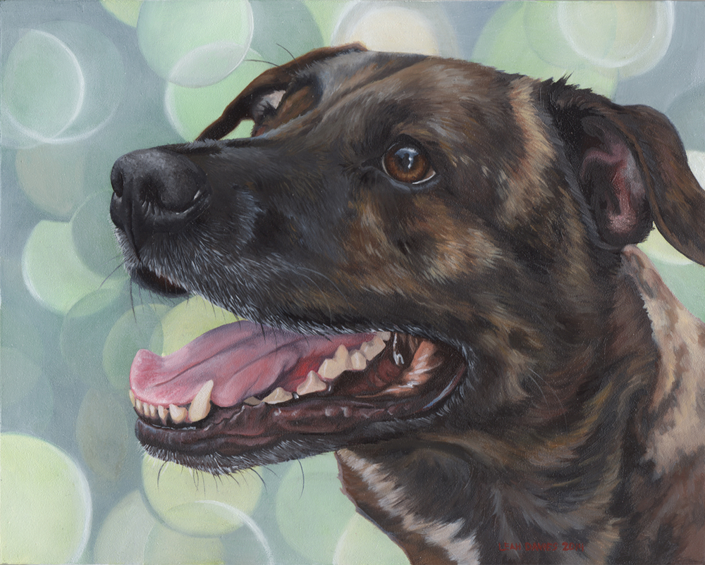 """Emmett"" 2014, Oil Painting"